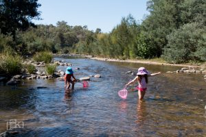 PK Photography newcastle blue mountains children play in creek